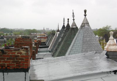 Washington DC Roofscape